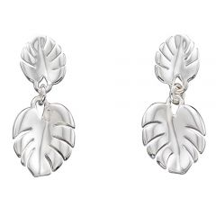 Silver cheese plant leaf drop earrings